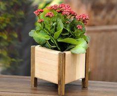 Mulyen Flower Box - Mini Çiçeklik 4'ü Bir Arada Pencere önünde rengarenk çiçekler.. Saklanmayın bahar geldi!Rengarenk çiçekler yine.... 403498