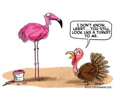 Funny+Thanksgiving+Cartoons | Thanksgiving 2012 Cartoon Turkey Flamingo Cartoon