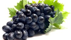 Freshfalsabzi is an online shopping store in Delhi NCR where you can buy fresh Fruits online with free home delivery. Grape Nutrition, Strawberry Nutrition Facts, Quest Nutrition, Nutrition Guide, Nutrition Tracker, Nutrition Classes, Nutrition Activities, Nutrition Shakes, Shopping