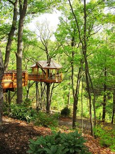 Nay Aug Park in Scranton, Pennsylvania offers every kid's dream of a giant tree house! Mom & Dad will like it, too!