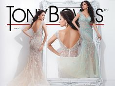 Tony Bowls Collection 114C11