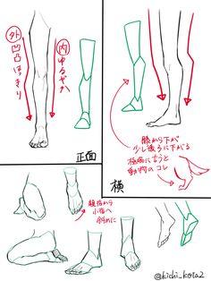 Drawing Legs, Feet Drawing, Body Drawing, Anatomy Drawing, Anatomy Art, Drawing Faces, Drawing Reference Poses, Anatomy Reference, Leg Reference