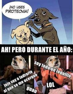 La doble moral de los perros        Gracias a http://www.cuantocabron.com/   Si quieres leer la noticia completa visita: http://www.estoy-aburrido.com/la-doble-moral-de-los-perros/