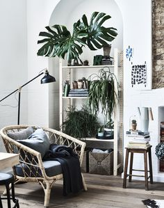 A neutral coloured living space with pale wood and plants.