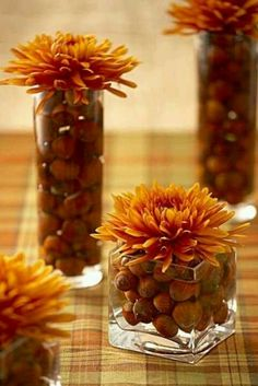 Great idea for a fall centerpiece - fill your vases with hazelnuts and top with a flower.