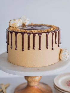 The ultimate s'mores cake for peanut butter lovers! Graham cracker cake layers with a toasted marshmallow filling, toasted graham crackers, chocolate ganache and peanut butter buttercream. Chocolate Drip, Chocolate Peanuts, Chocolate Peanut Butter, Chocolate Ganache, Healthy Chocolate, Marshmallow Cake, Toasted Marshmallow, Graham Cracker Cake, Graham Crackers
