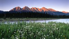 Mountains Kootenay National Park British Columbia Canada Wallpapers Design 1920x1080 Pixel