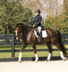 How to Ride the Walk: Pedaling~The walk is the hardest gait to ride well because it has no suspension and, therefore, no momentum to help your horse keep the rhythm as in trot and canter. At the same time, the highest percentage of