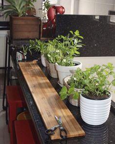 Em breve hortinha na nossa cozinha 🌱 . . . . #casadosfundos #cozinha #casa #horta #vegetariano #apartamento #hortavertical #wood #plants #garden #kitchen #kitchendesign #kitchendecor #home #homesweethome #instahome #instadecor #instadesign #decor #decoraçao #homedecor #interior #interiores #rustic #designdeinteriores #interiordesign #farmlife #tonoadorofarm