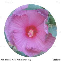 Pink Hibiscus Paper Plate  sc 1 st  Pinterest & Wildflower Violets Paper Plate | Violets Paper and Plates