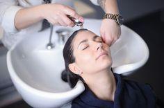 Cut and Shampoo Salons, Shampoo, Spa, Luxury, Lounges