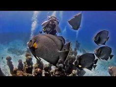 Snorkel in the Cancun Underwater Museum MUSA