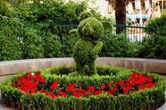 Mickey Mouse Topiary