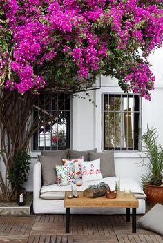 Backyard design... Galen Turkbuku Hotel, Bodrum
