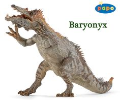 Papo Baryonyx dinosaur model - available early 2016 from Everything Dinosaur.  Everything Dinosaur team members comment on the new for 2016 Papo replicas.