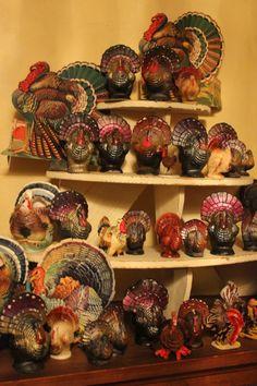 Lots of turkeys......