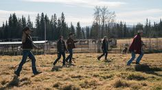 10 x 16 This Sunday - A Long Shot - Heartland Jack, Amy Tim, Georgie and Mitch trying to catch horses