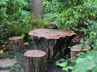 A table and chairs crafted from tree stumps create a magical, secret garden lair.