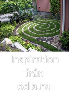 If our yard was in shade we could potentially have this moss spiral!   How to have a spiral there.... Looking for alternatives to grass