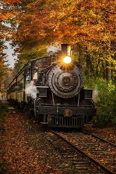 """Essex Steam Train's """"Engine 40"""" passing through the autumn foliage at Canfield Woods in Deep River, CT."""