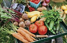Local or Organic?  The gold standard is both.  You decide.  Informative article. Eating Better Than Organic, @Time