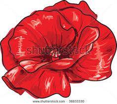 poppy flower - Google Search
