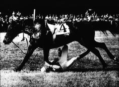 Photographer/Creator  Wilton Abel  Collection  1970  Publisher  Charlotte Observer  Caption/Description  Rider falls off his mount during a horse show and is trampled.