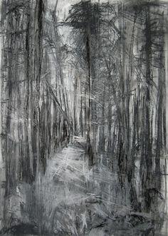 "Saatchi Online Artist: Janine Baldwin; Charcoal, Drawing ""'Silpho Forest'"""