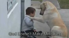 Sweet Mama Dog Interacting with a Beautiful Child with Down Syndrome. How utterly beautiful <3