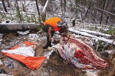 Elk hunting is hard work, but the real work begins once you actually tag one. Here are some rules to save your back and your meat in the woods. Elk Hunting Tips, Hunting Packs, Whitetail Deer Hunting, Big Game Hunting, Archery Hunting, Bow Hunting, Bowfishing, Animal Facts, Outdoor Life
