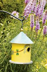 Birdhouse - Hand Painted....What fun it would be with an old metal funnel on top!