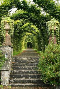 Beautiful Places...Birr Castle Garden, Offaly, Ireland, photo by Luke Ravitch, ravitch via Flickr.