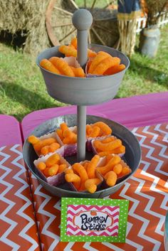 Makenna's Pumpkin Patch ~ 1st Birthday Party | CatchMyParty.com