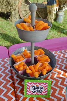 Makenna's Pumpkin Patch ~ 1st Birthday Party | CatchMyParty.com