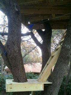 Every Kid's Dream Tree House – How to Build It