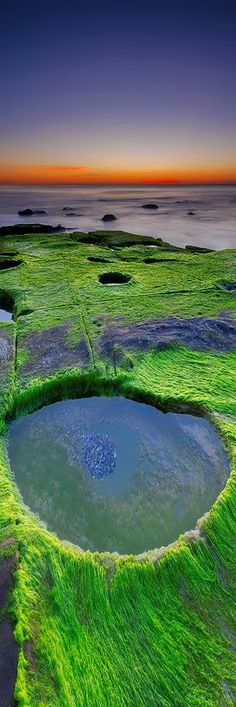 Newcastle Beach @ sunrise, southern end with lots of green mossy rocks.  It's like someone took a cookie cutter and punched out some holes. Filled at high tide or connected to the sea underground?