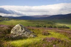 Scottish Moors - hope to visit some day...