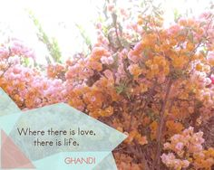 """""""Where there is love, there is life."""" -Gandhi 