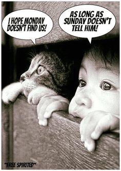 Free Spirit, Humor, Pets, Funny, Movies, Movie Posters, Animals, Manic Monday, Holidays