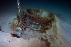 Apollo F-1 engines recovered from the bottom of the Atlantic by Bezos Expeditions
