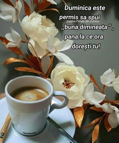 Winter Photography, Good Morning, Sunday, Tableware, Faith, Coffee, Quotes, Flowers, Bom Dia