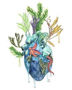 ******** Combine this with ocean waves ontop Watercolor Anatomical Heart Painting by TheColorfulCatStudio Art And Illustration, Art Illustrations, Art Amour, Ocean Heart, Frida Art, Ocean Tattoos, Heart Painting, Anatomy Art, Inspiration Art