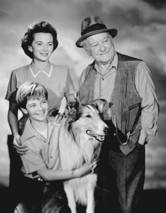 Elenco de Lassie em 1955:Jan Clayton, George Cleveland, o menino Tommy Rettig e Pal (como Lassie) Lassie cast 1955 - Lassie – Wikipédia, a enciclopédia livre
