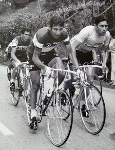 Giro d'Italia 1969 Michelotto, Gimondi & Merckx