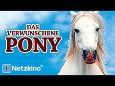 YouTube K Om, Animation, Videos, Youtube, Horses, Animals, Movies, Animales, Animaux