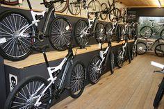 Cameleon bike