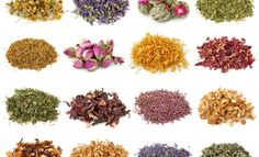 2016 Herbal Calendar  Decorate your year with beautiful herbalism photos and recipes featured in this collaborative calendar. Each month brings a new plant to explore – with quotes, recipes, and other inspiration to serve you throughout 2016.