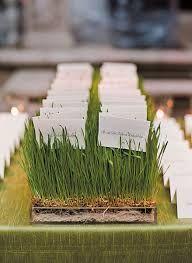 Risultati immagini per tableau con vasetti di erbe aromatiche