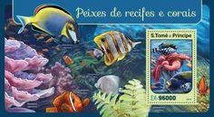 ST16405b Corals and reef fishes (Balistoides conspicillum, Stichodactyla haddoni)