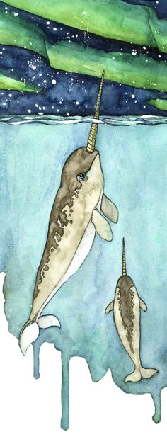Watercolor Narwhal Painting
